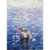 Igor Dubovoy Swan
